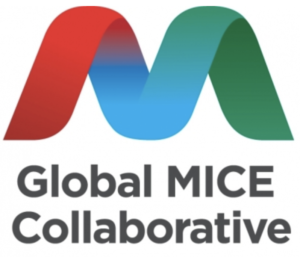 GLOBAL MICE COLLABORATIVE