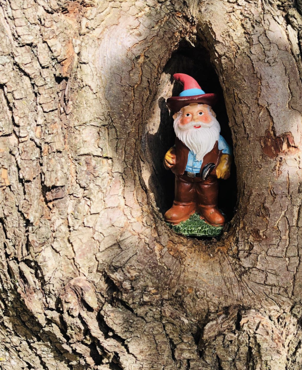 A gnome in Fayetteville, W. VA CREDIT CAITLIN TAN / WEST VIRGINIA PUBLIC BROADCASTING